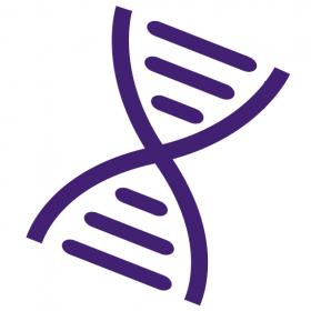 Online Genetic Counseling App