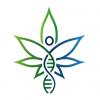 Cannabis DNA Health Report