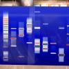 DNA Art Blue