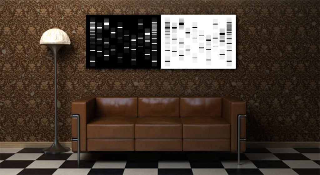 Display your DNA and genome as artwork for you and your family