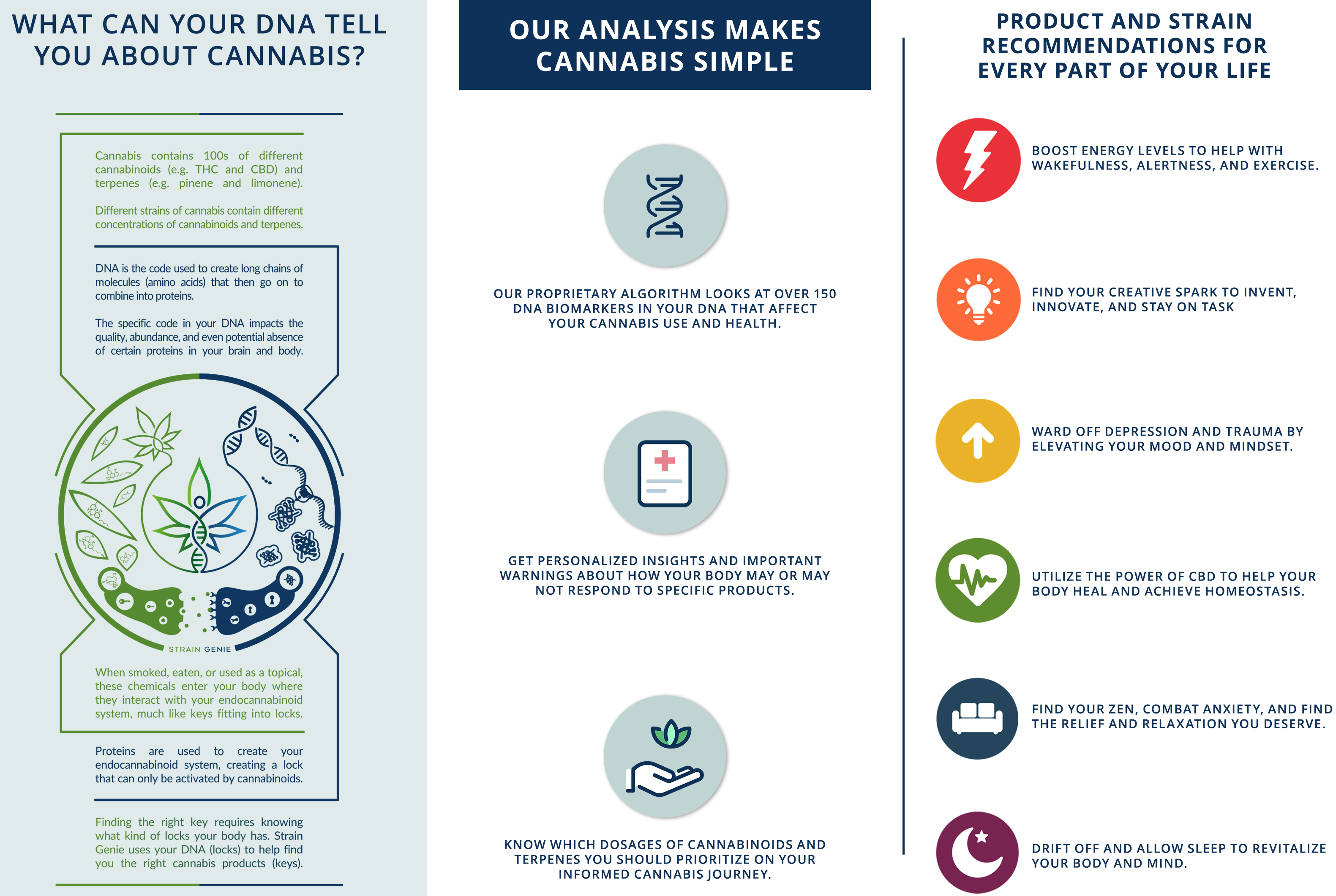 Cannabis DNA Testing Analysis Guide