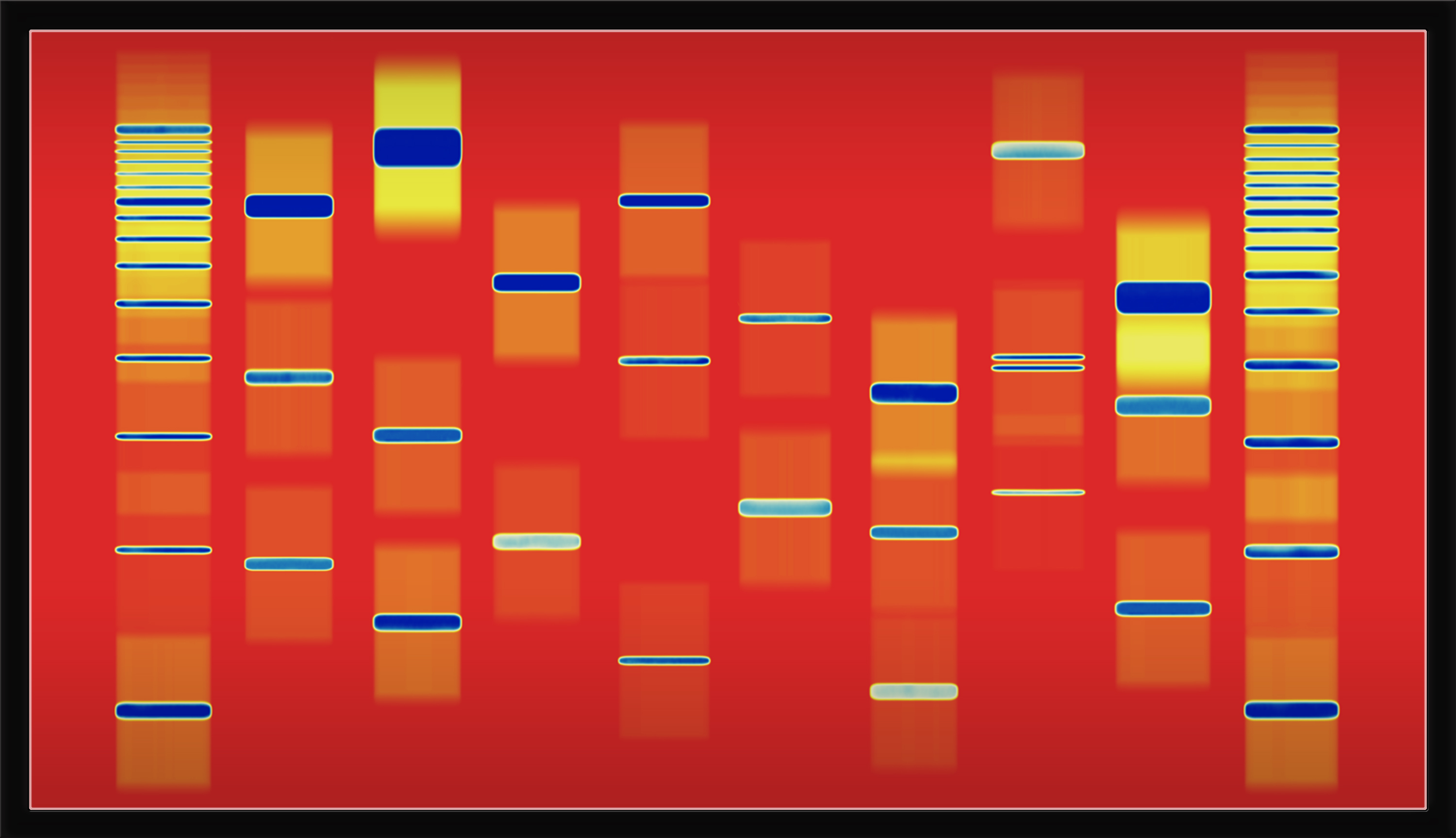Digital art sample image from DNA Art US in Sequencing.com store for Genome Apps and Personalized Products