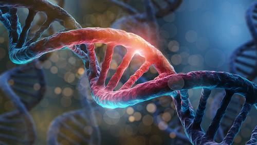 genetic testing alzheimers
