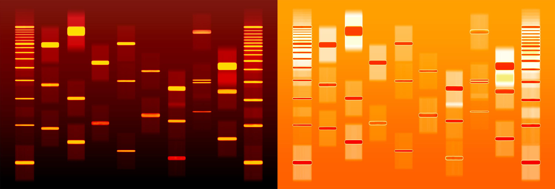 Buy DNA art online