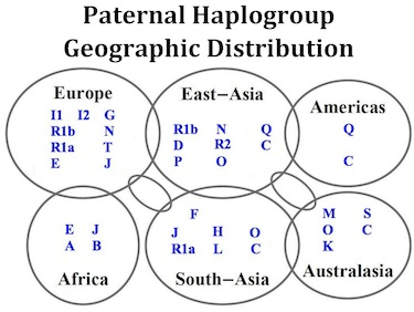 Paternal Haplogroup Geographic Distribution