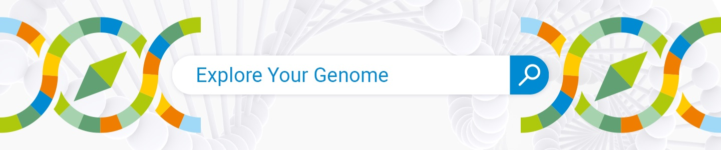 Genome Explorer Raw DNA Data Search Engine