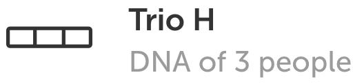 DNA Art TrioH price