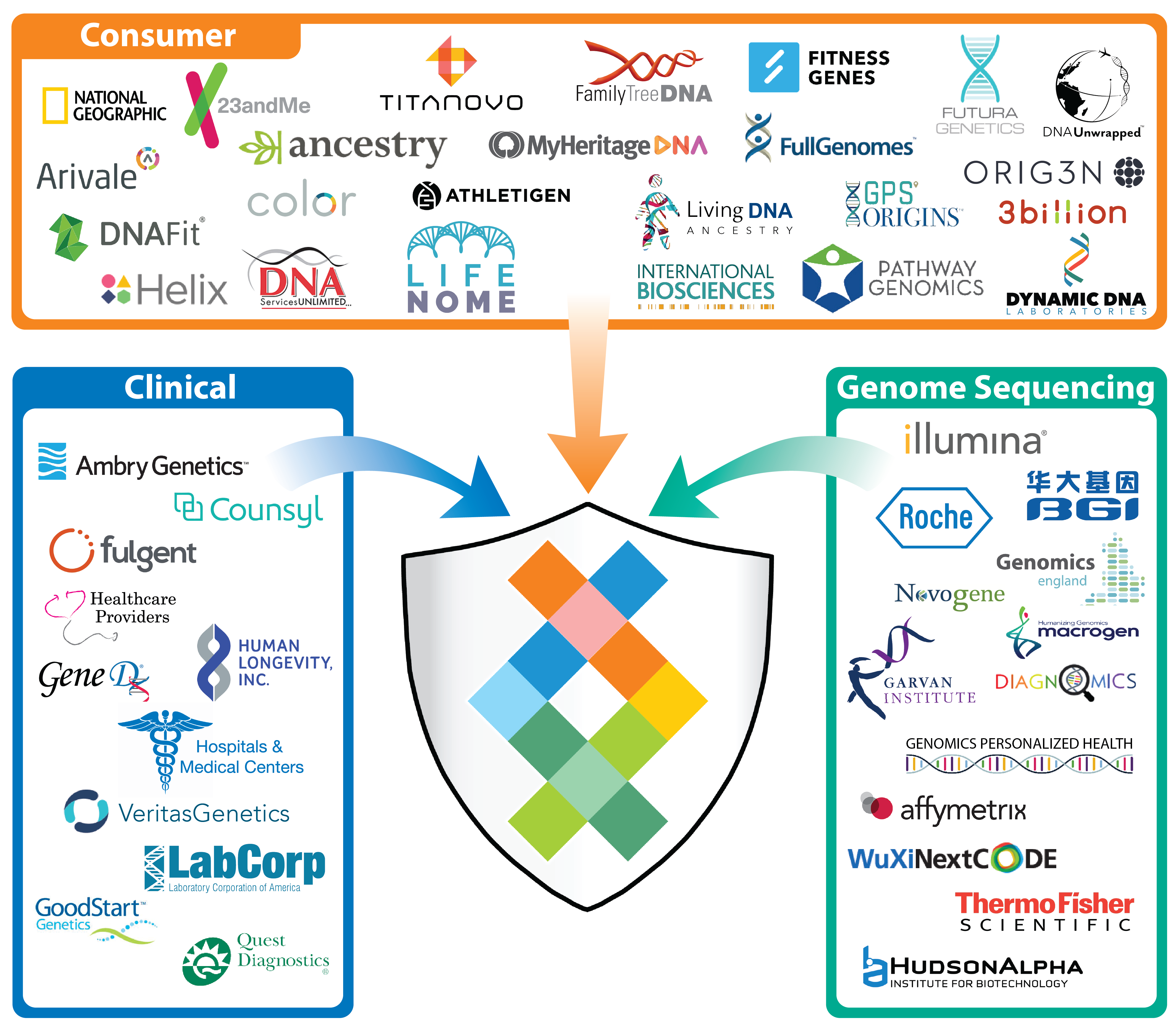 Sequencing.com's Universal Genetic Data Compatibility enables apps and apis to work with DNA data from all genetic testing providers including 23andMe, Helix, Color, Veritas Genetics, Counsyl, National Geographic, Arivale, MyHeritage, Family Tree DNA, FTDNA, Gene by Gene, Genos, Dante Labs, Illumina, 24Genetics, tellmeGen, Silverberry Genomix, Toolbox Genomics, LifeNome and all exome and whole genome sequencing labs.