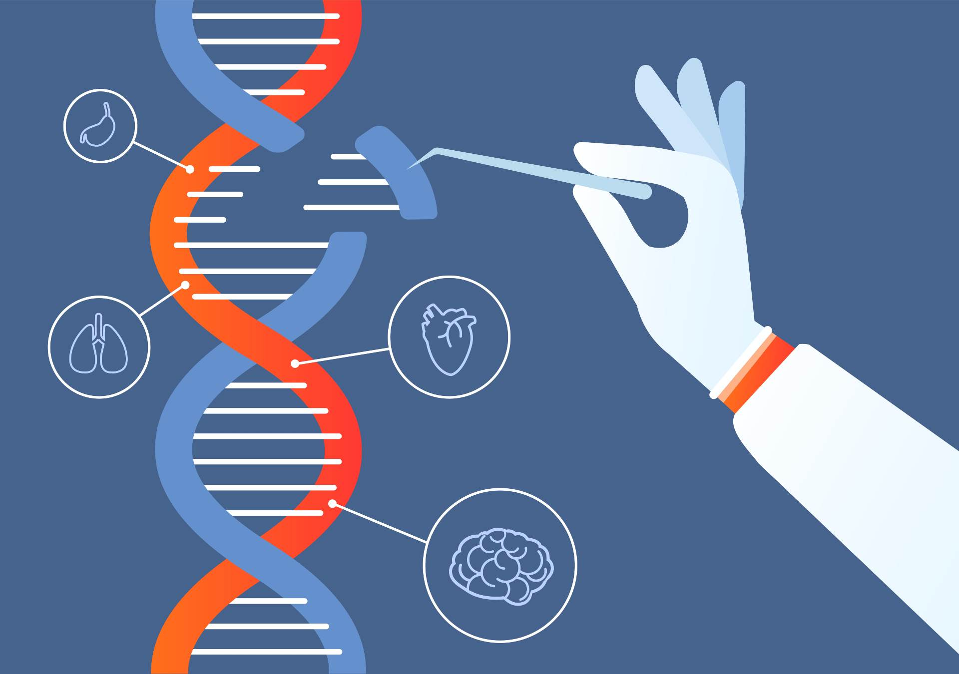 best dna test for adoptees