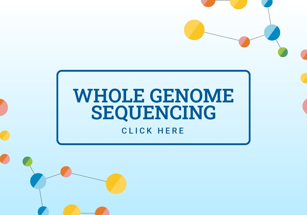 whole genome sequencing analysis service