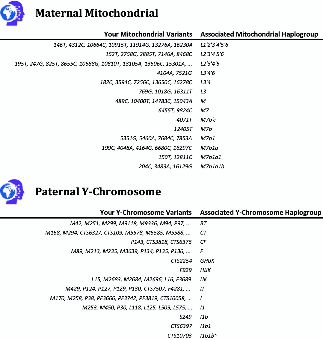 Paternal Y Chromosome and Maternal MT Haplogroup Assessment